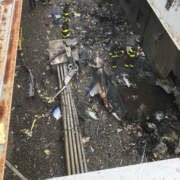 New York City Helicopter Crash Update: Pilot Shouldn't Have Been Flying